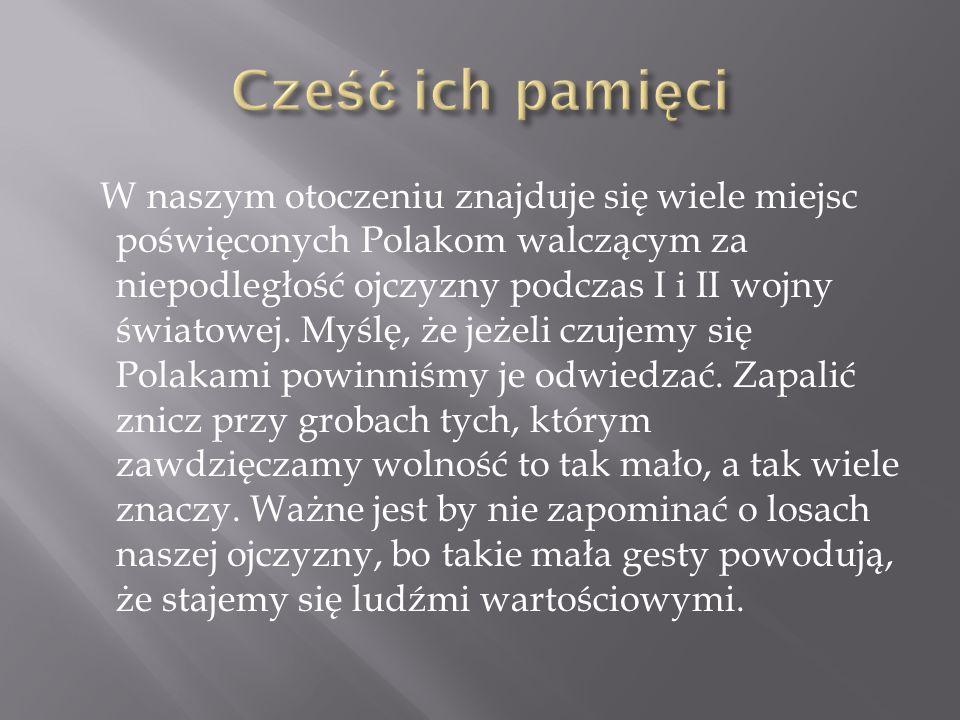 W naszym otoczeniu znajduje się wiele miejsc poświęconych Polakom walczącym za niepodległość ojczyzny podczas I i II wojny światowej. Myślę, że jeżeli
