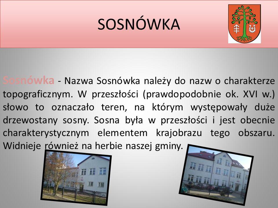 SOSNÓWKA Sosnówka - Nazwa Sosnówka należy do nazw o charakterze topograficznym.