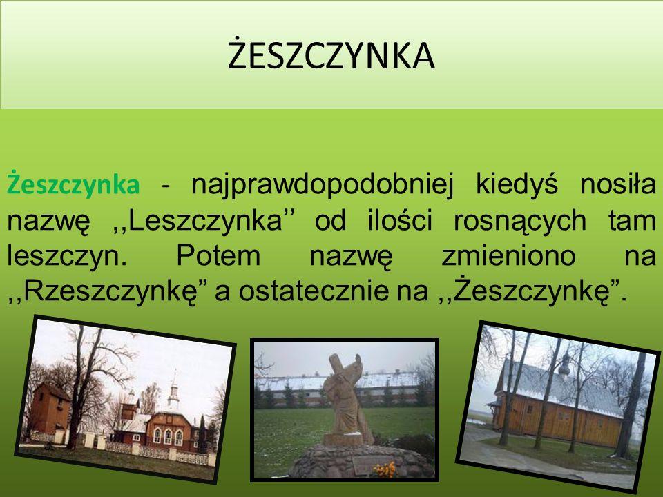 2014-03-02 ŻESZCZYNKA Żeszczynka - najprawdopodobniej kiedyś nosiła nazwę,,Leszczynka od ilości rosnących tam leszczyn.