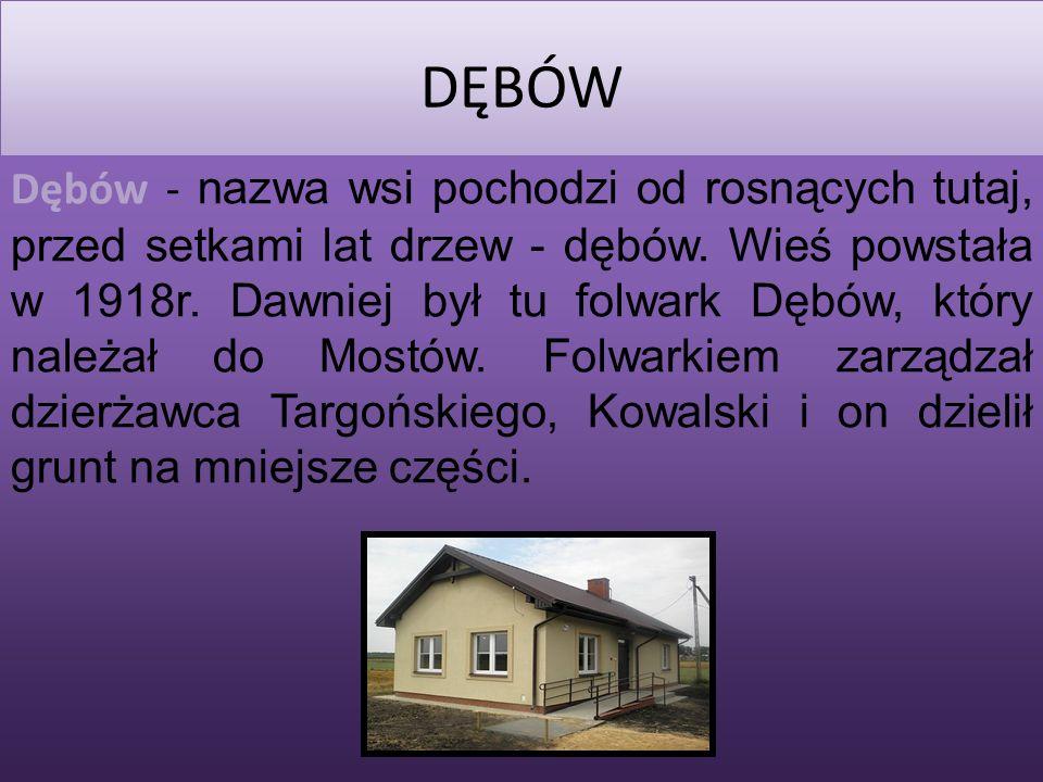 2014-03-02 DĘBÓW Dębów - nazwa wsi pochodzi od rosnących tutaj, przed setkami lat drzew - dębów.