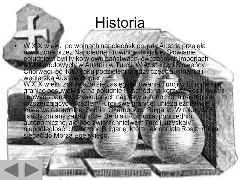Historia W XIX wieku, po wojnach napoleońskich, gdy Austria przejęła utworzone przez Napoleona Prowincje Iliryjskie, Słowianie południowi byli tylko w dwu państwach, ówczesnych imperiach wielonarodowych: w Austrii i w Turcji.