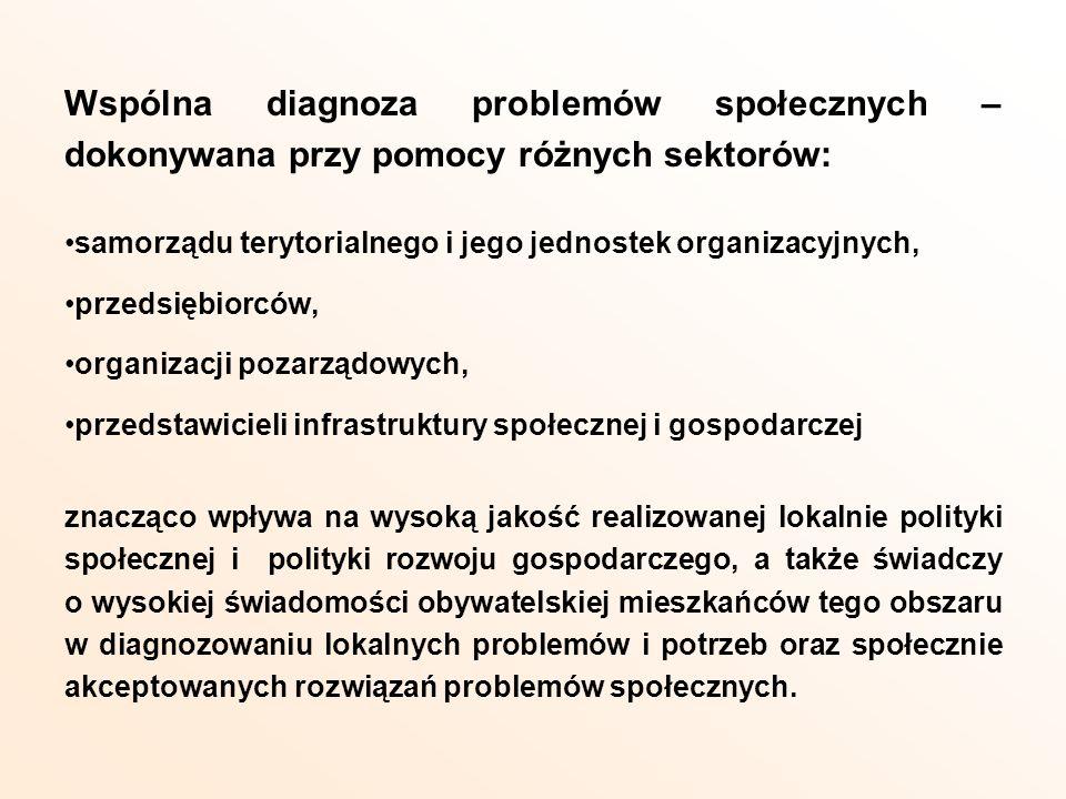 Wspólna diagnoza problemów społecznych – dokonywana przy pomocy różnych sektorów: samorządu terytorialnego i jego jednostek organizacyjnych, przedsięb
