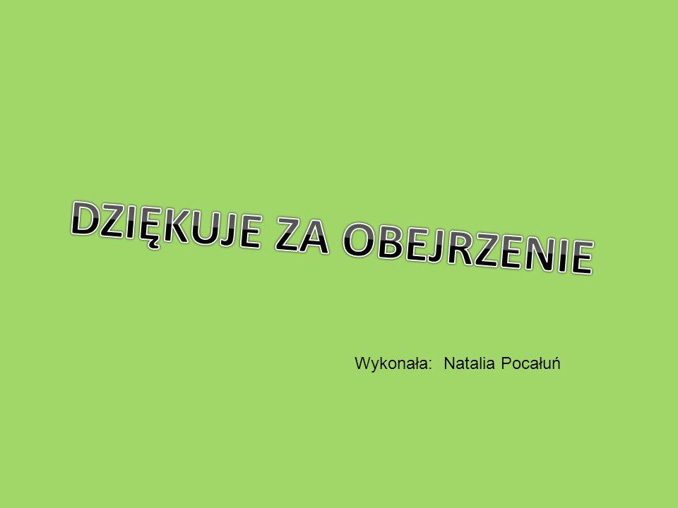 Wykonała: Natalia Pocałuń