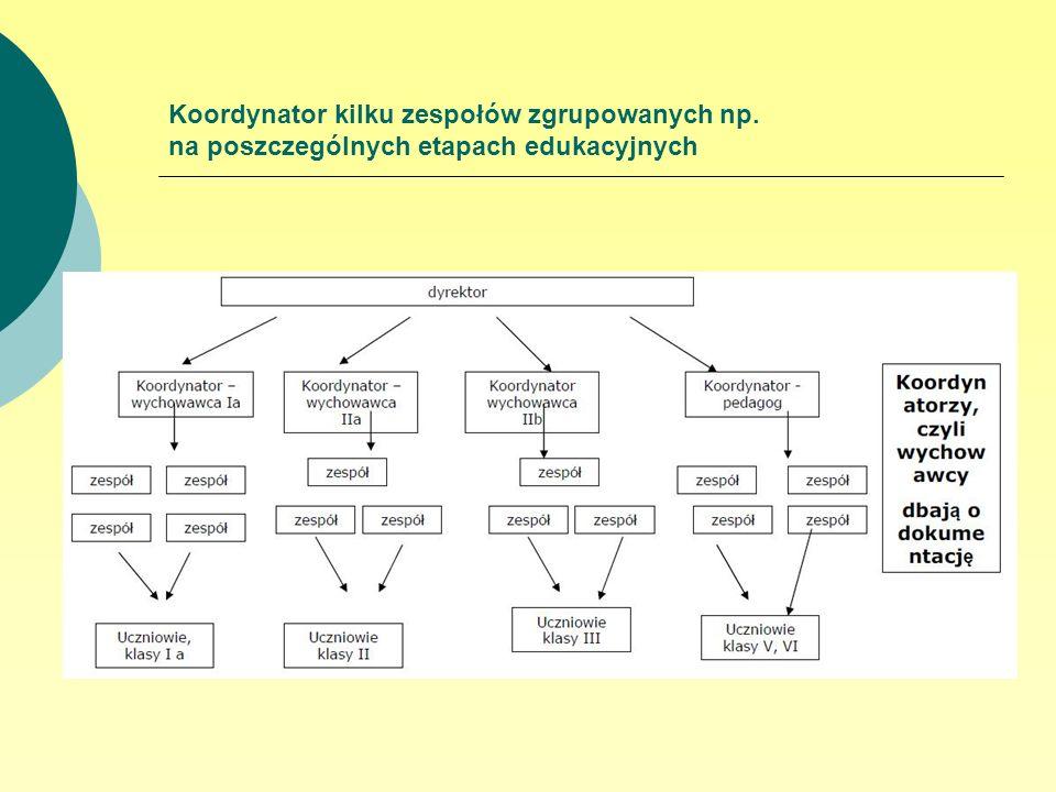 Koordynator kilku zespołów zgrupowanych np. na poszczególnych etapach edukacyjnych