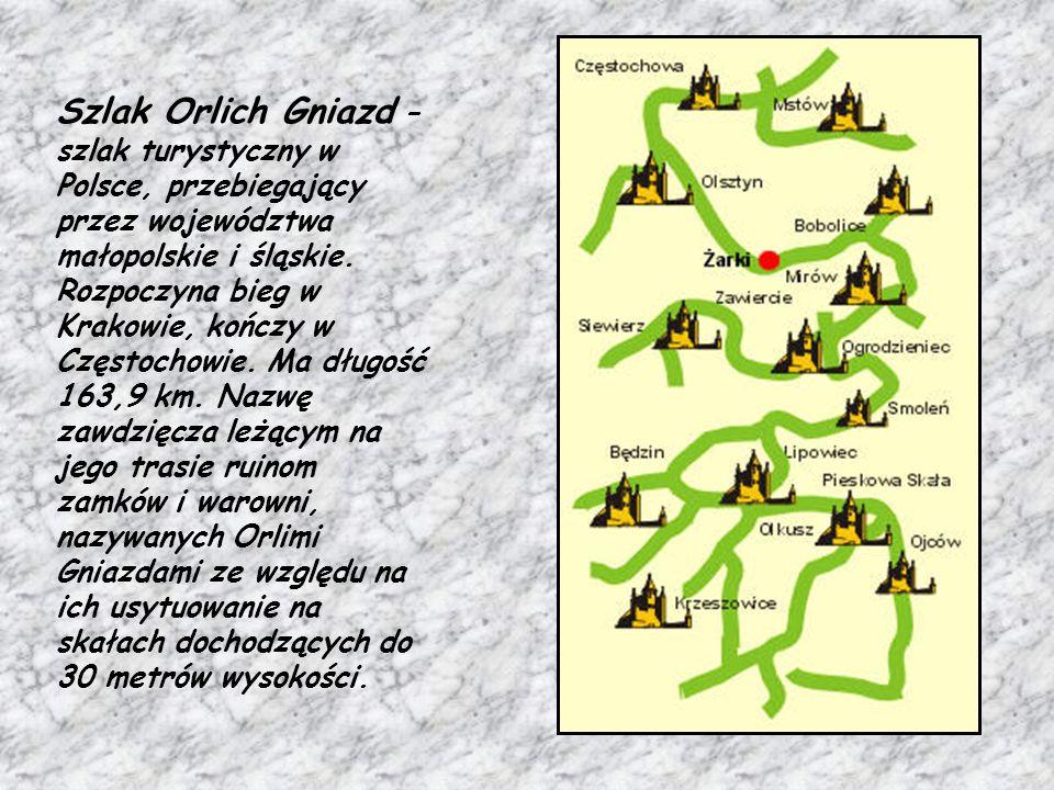 Szlak ten został opisany i utworzony przez Kazimierza Sosnowskiego.