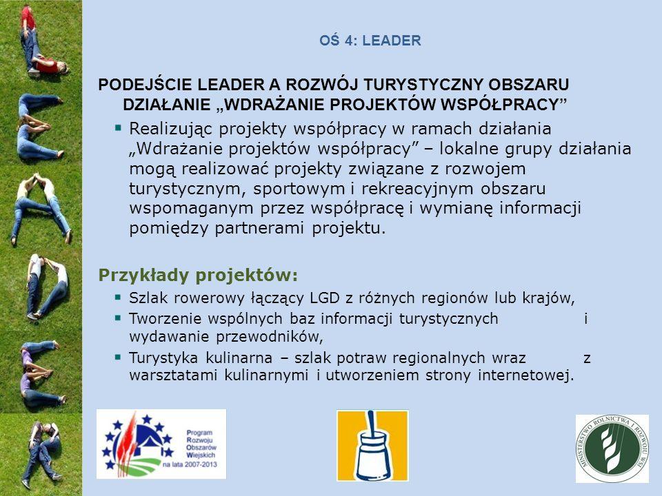 OŚ 4: LEADER PODEJŚCIE LEADER A ROZWÓJ TURYSTYCZNY OBSZARU DZIAŁANIE WDRAŻANIE PROJEKTÓW WSPÓŁPRACY Realizując projekty współpracy w ramach działania Wdrażanie projektów współpracy – lokalne grupy działania mogą realizować projekty związane z rozwojem turystycznym, sportowym i rekreacyjnym obszaru wspomaganym przez współpracę i wymianę informacji pomiędzy partnerami projektu.