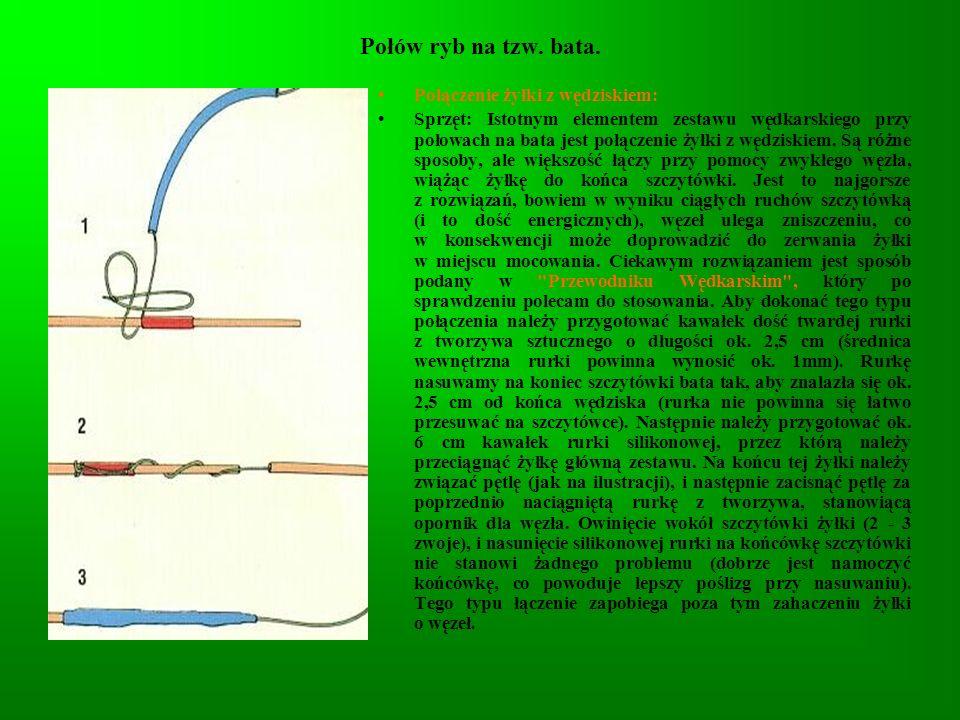 Połów ryb na tzw. bata. Połączenie żyłki z wędziskiem: Sprzęt: Istotnym elementem zestawu wędkarskiego przy połowach na bata jest połączenie żyłki z w
