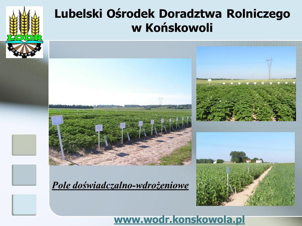 Lubelski Ośrodek Doradztwa Rolniczego w Końskowoli Pole doświadczalno-wdrożeniowe www.wodr.konskowola.pl