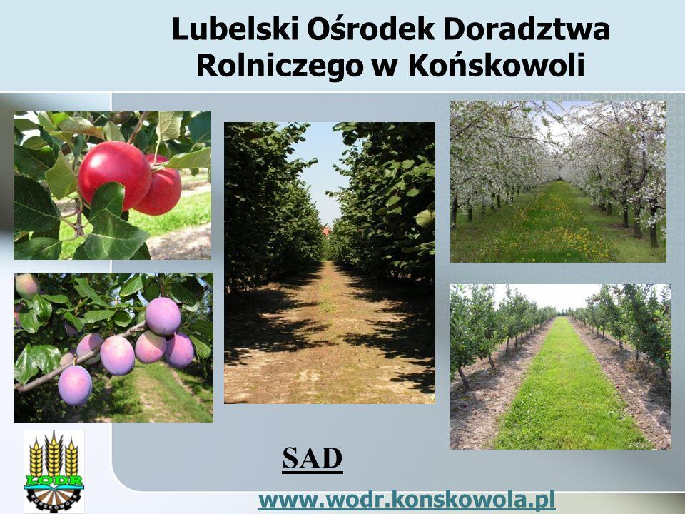 Lubelski Ośrodek Doradztwa Rolniczego w Końskowoli SAD www.wodr.konskowola.pl