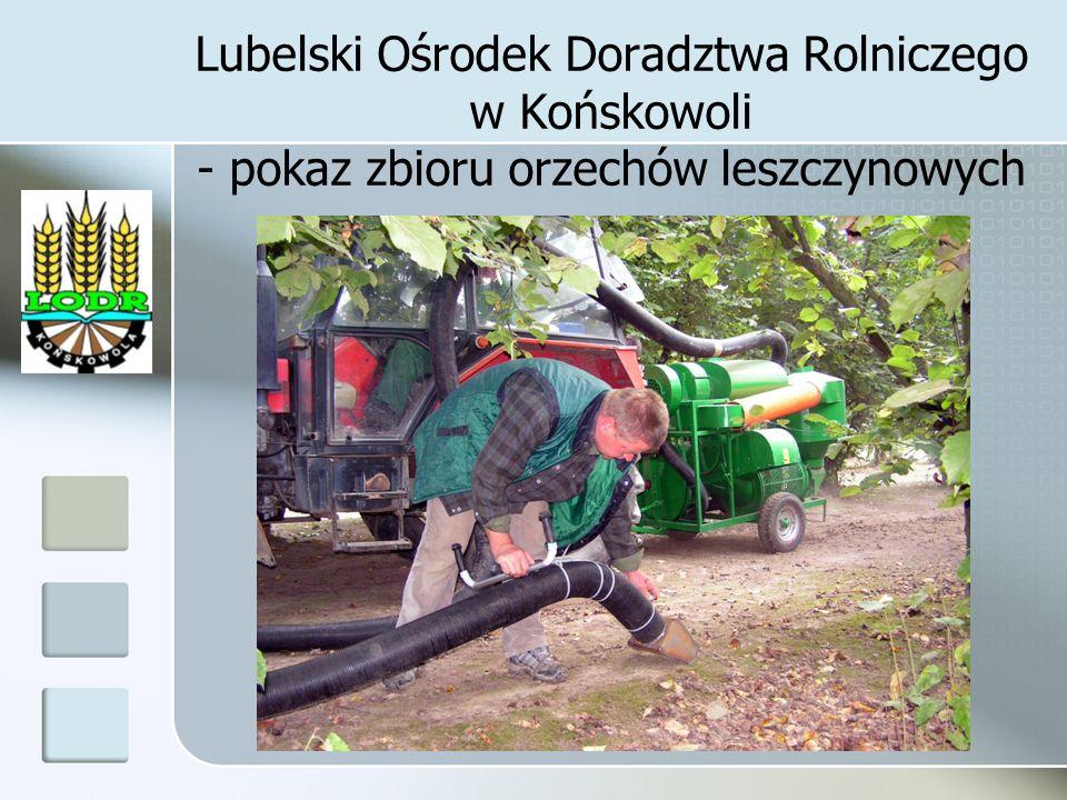 Lubelski Ośrodek Doradztwa Rolniczego w Końskowoli - pokaz zbioru orzechów leszczynowych