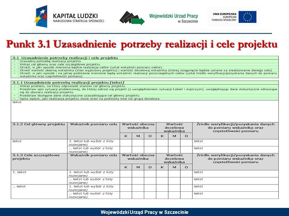 Wojewódzki Urząd Pracy w Szczecinie Punkt 3.1 Uzasadnienie potrzeby realizacji i cele projektu