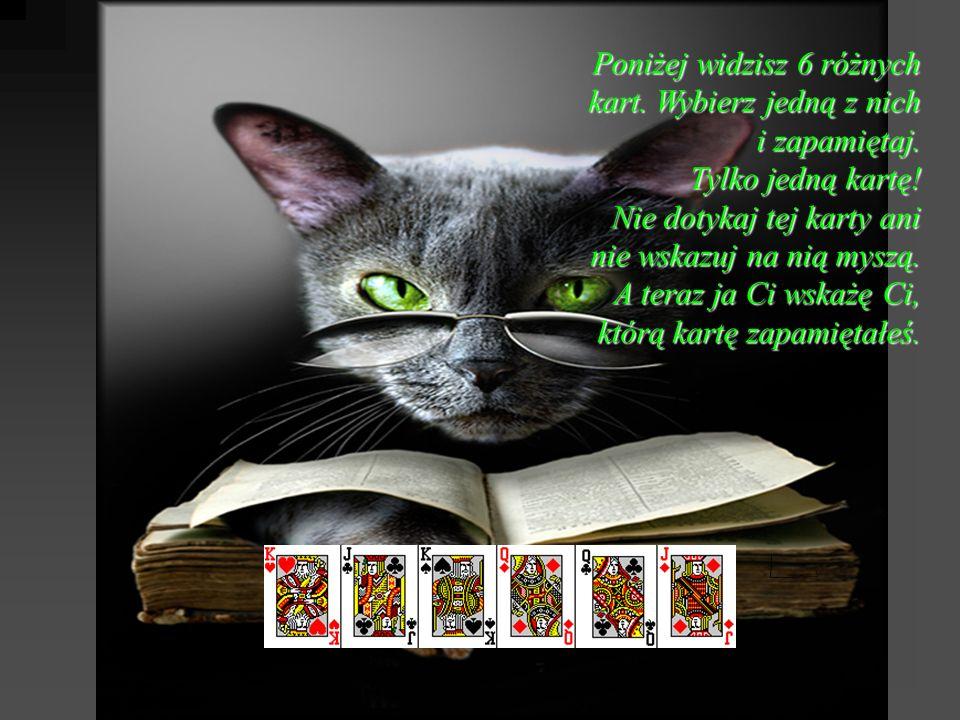 Poniżej widzisz 6 różnych kart. Wybierz jedną z nich i zapamiętaj. Tylko jedną kartę! Nie dotykaj tej karty ani nie wskazuj na nią myszą. A teraz ja C