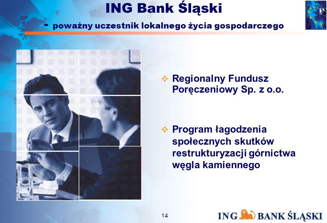 13 EBOR – Linia dla MSP Łatwy Eksport ARiMR Krajowy Fundusz Poręczeń Kredytowych (BGK) Phare 2000 / 2001 ING Bank Śląski - doradca w zakresie finansowania