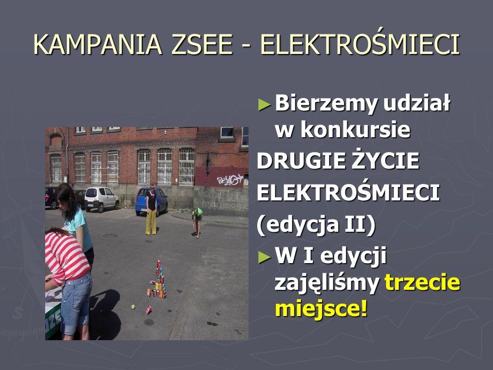 KAMPANIA ZSEE - ELEKTROŚMIECI Bierzemy udział w konkursie DRUGIE ŻYCIE ELEKTROŚMIECI (edycja II) W I edycji zajęliśmy trzecie miejsce!