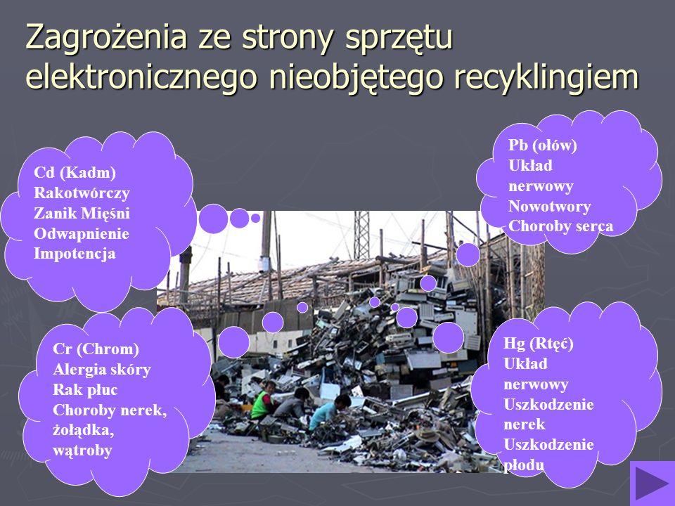 Zagrożenia ze strony sprzętu elektronicznego nieobjętego recyklingiem Cd (Kadm) Rakotwórczy Zanik Mięśni Odwapnienie Impotencja Pb (ołów) Układ nerwow
