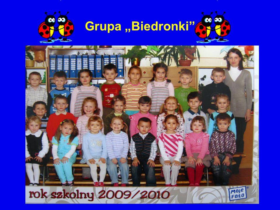 Grupa Biedronki