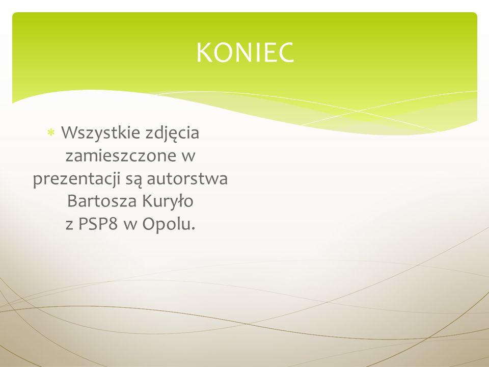 W szystkie zdjęcia zamieszczone w prezentacji są autorstwa Bartosza Kuryło z PSP8 w Opolu. KONIEC