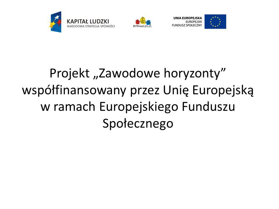 Projekt Zawodowe horyzonty współfinansowany przez Unię Europejską w ramach Europejskiego Funduszu Społecznego