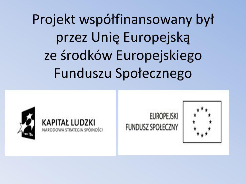 Projekt współfinansowany był przez Unię Europejską ze środków Europejskiego Funduszu Społecznego