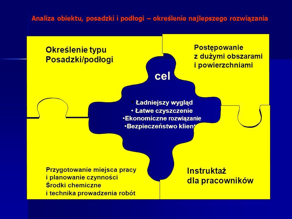 Ładniejszy wygląd Łatwe czyszczenie Ekonomiczne rozwiązanie Bezpieczeństwo klienta cel Określenie typu Posadzki/podłogi Postępowanie z dużymi obszaram