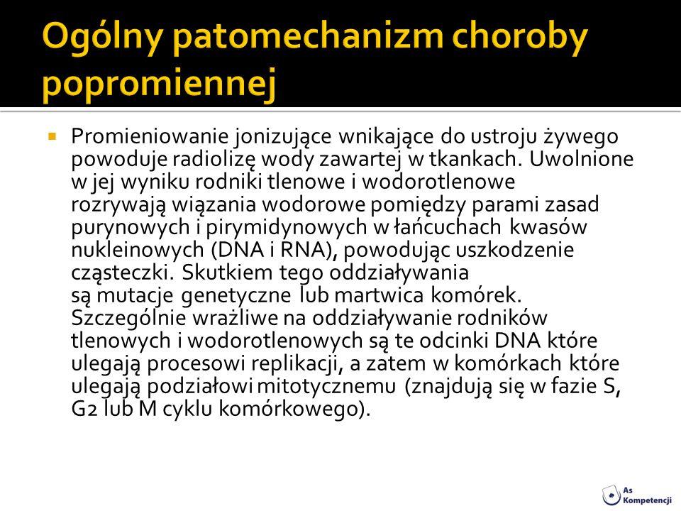 Promieniowanie jonizujące wnikające do ustroju żywego powoduje radiolizę wody zawartej w tkankach. Uwolnione w jej wyniku rodniki tlenowe i wodorotlen