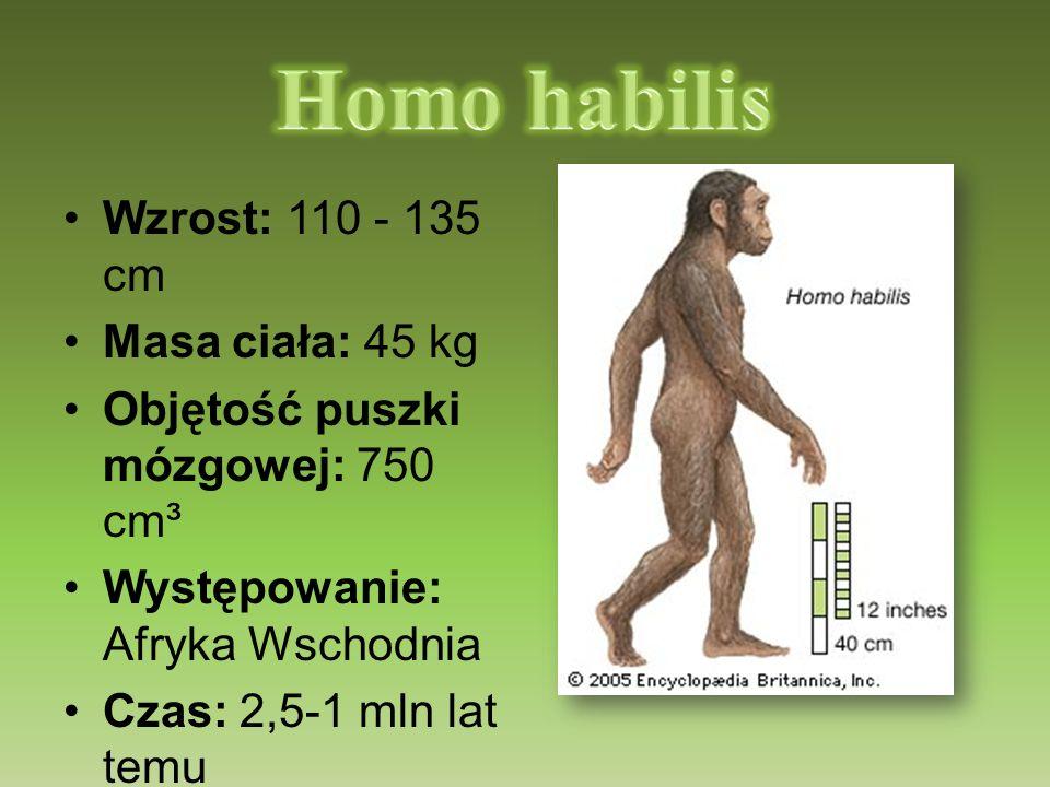 Wzrost: 110 - 135 cm Masa ciała: 45 kg Objętość puszki mózgowej: 750 cm³ Występowanie: Afryka Wschodnia Czas: 2,5-1 mln lat temu