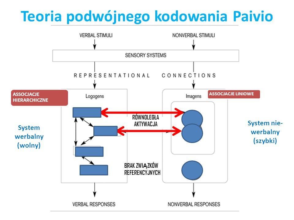 Teoria podwójnego kodowania Paivio System nie- werbalny (szybki) System werbalny (wolny) BRAK ZWI Ą ZKÓW REFERENCYJNYCH RÓWNOLEGŁA AKTYWACJA ASSOCJACJ
