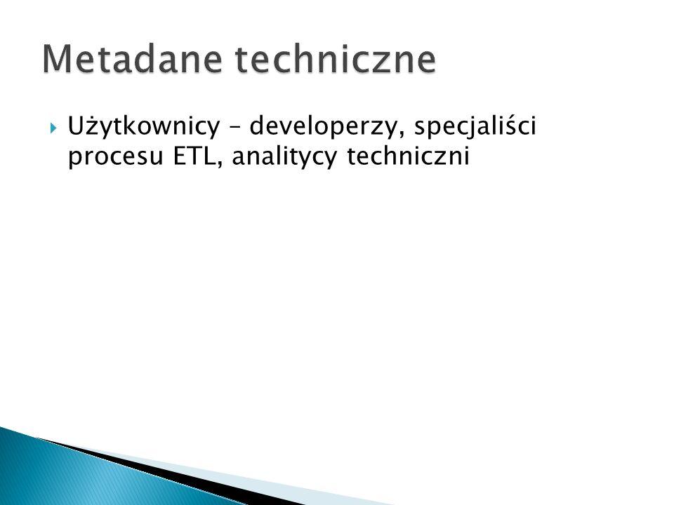 Użytkownicy – developerzy, specjaliści procesu ETL, analitycy techniczni