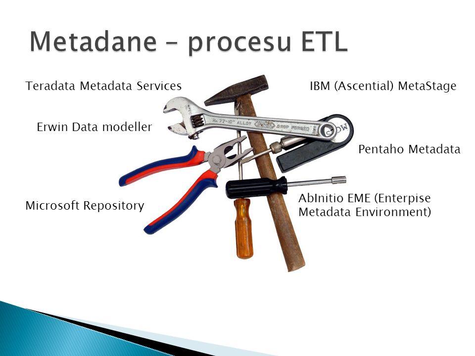Teradata Metadata Services Erwin Data modeller Microsoft Repository IBM (Ascential) MetaStage Pentaho Metadata AbInitio EME (Enterpise Metadata Environment)