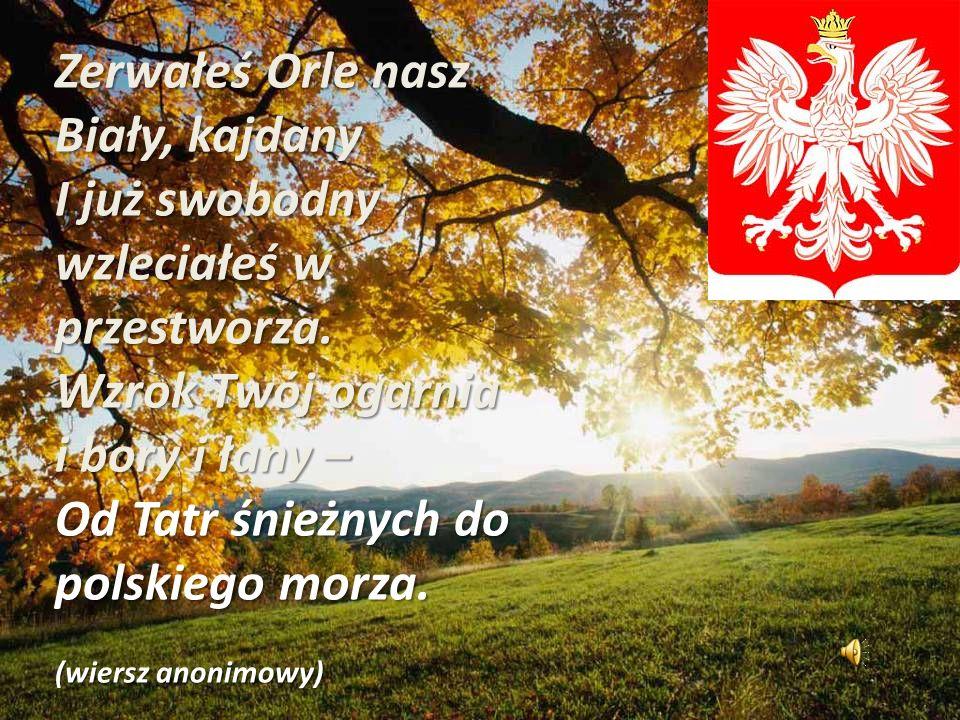 Zerwałeś Orle nasz Biały, kajdany I już swobodny wzleciałeś w przestworza. Wzrok Twój ogarnia i bory i łany – Od Tatr śnieżnych do polskiego morza. (w