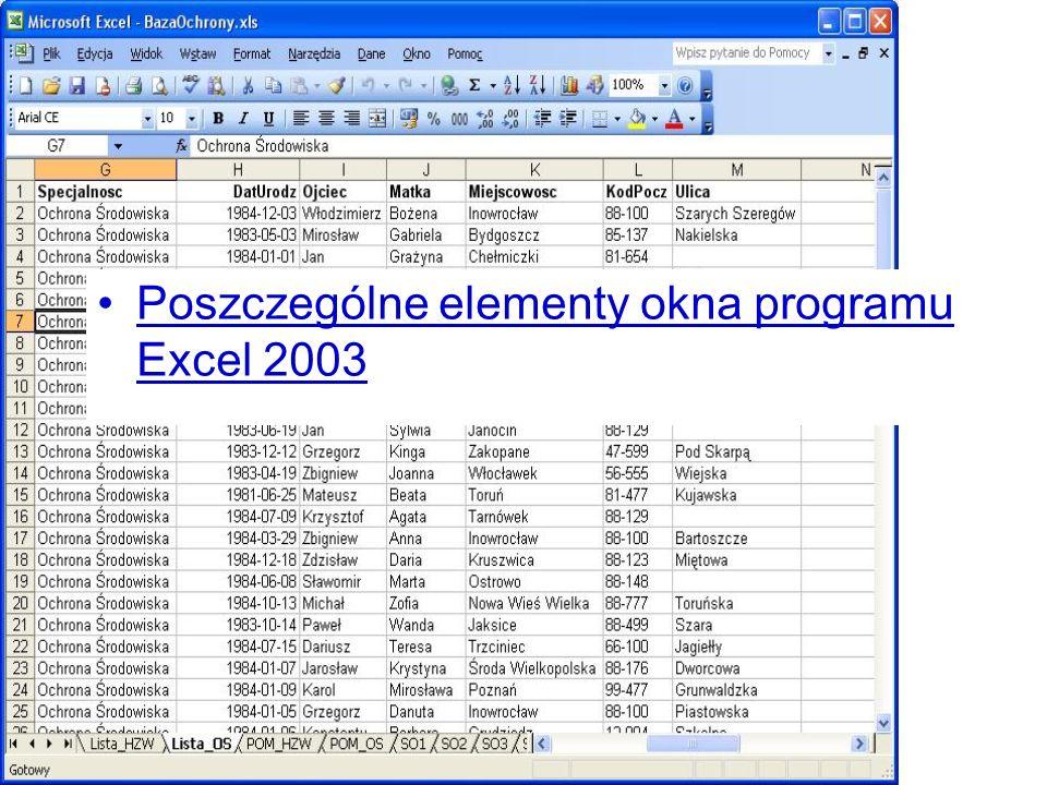 Poszczególne elementy okna programu Excel 2003