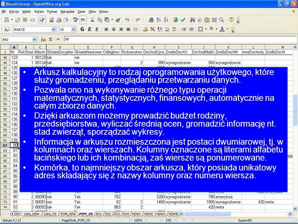 Arkusz kalkulacyjny to rodzaj oprogramowania użytkowego, które służy gromadzeniu, przeglądaniu przetwarzaniu danych.