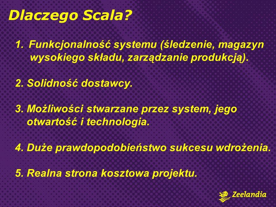 1.Funkcjonalność systemu (śledzenie, magazyn wysokiego składu, zarządzanie produkcją). 2. Solidność dostawcy. 3. Możliwości stwarzane przez system, je