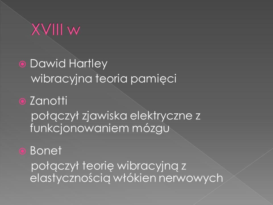 Dawid Hartley wibracyjna teoria pamięci Zanotti połączył zjawiska elektryczne z funkcjonowaniem mózgu Bonet połączył teorię wibracyjną z elastyczności