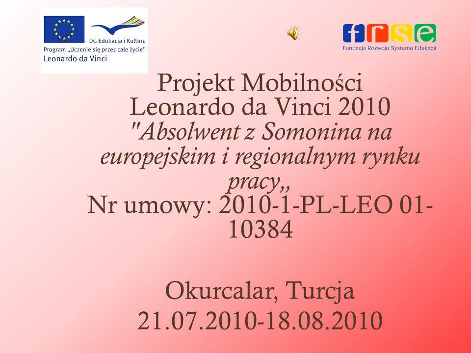 Projekt Mobilno ś ci Leonardo da Vinci 2010
