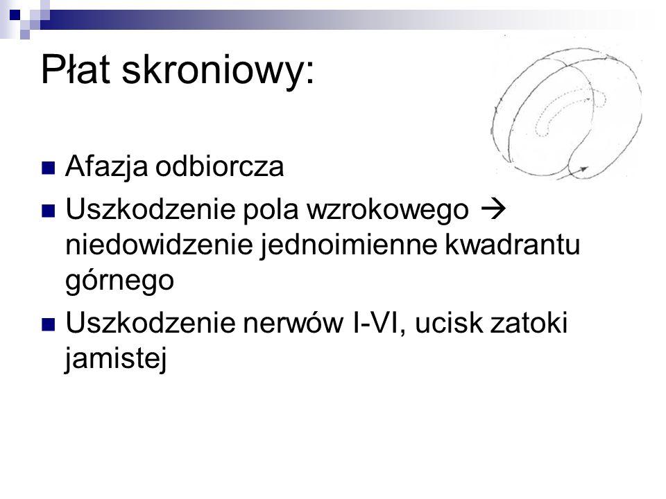 Płat skroniowy: Afazja odbiorcza Uszkodzenie pola wzrokowego niedowidzenie jednoimienne kwadrantu górnego Uszkodzenie nerwów I-VI, ucisk zatoki jamistej