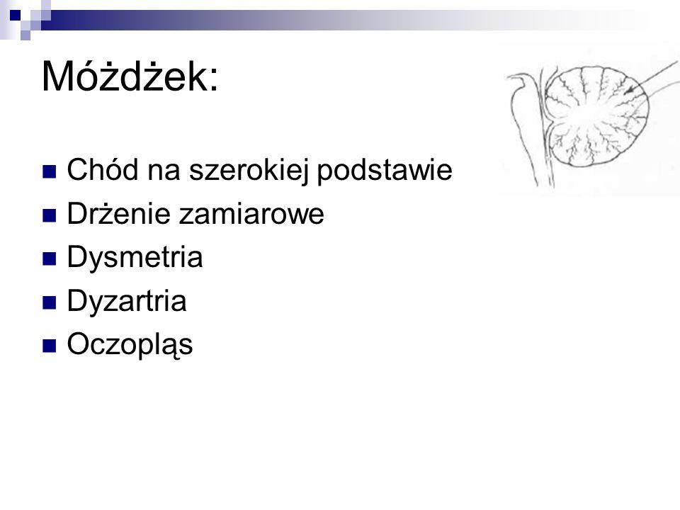 Móżdżek: Chód na szerokiej podstawie Drżenie zamiarowe Dysmetria Dyzartria Oczopląs