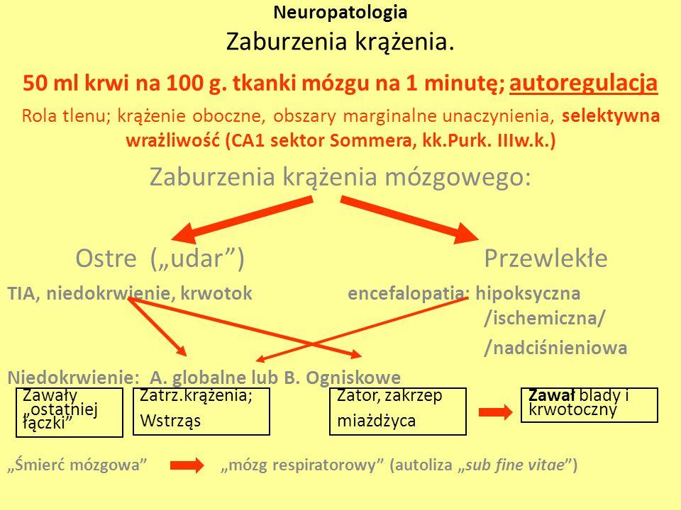 Neuropatologia Zaburzenia krążenia. 50 ml krwi na 100 g. tkanki mózgu na 1 minutę; autoregulacja Rola tlenu; krążenie oboczne, obszary marginalne unac