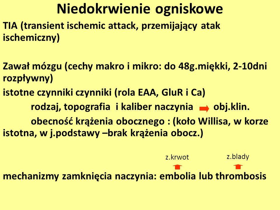 Niedokrwienie ogniskowe TIA (transient ischemic attack, przemijający atak ischemiczny) Zawał mózgu (cechy makro i mikro: do 48g.miękki, 2-10dni rozpły