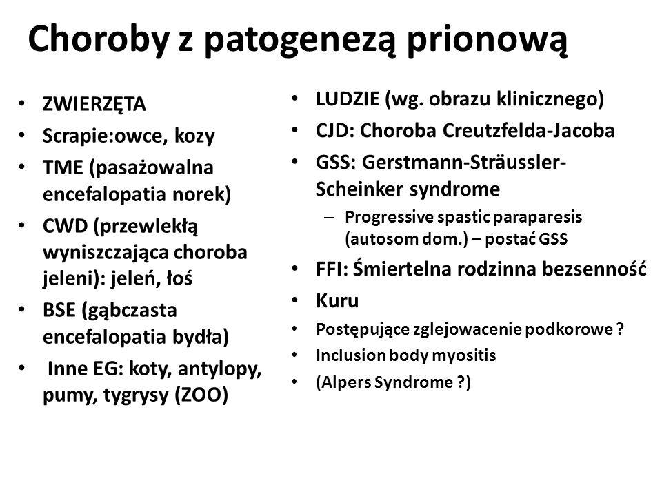 Choroby z patogenezą prionową ZWIERZĘTA Scrapie:owce, kozy TME (pasażowalna encefalopatia norek) CWD (przewlekłą wyniszczająca choroba jeleni): jeleń,