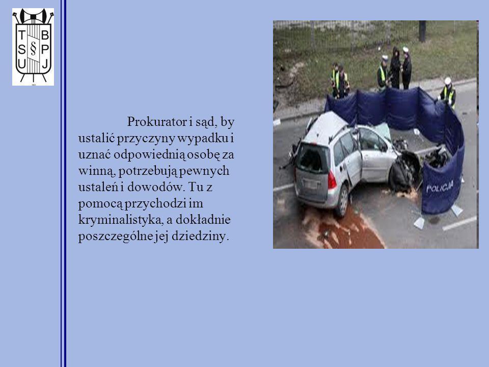 Prokurator i sąd, by ustalić przyczyny wypadku i uznać odpowiednią osobę za winną, potrzebują pewnych ustaleń i dowodów. Tu z pomocą przychodzi im kry