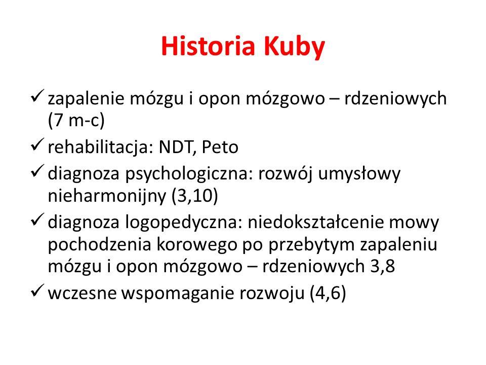 Historia Kuby zapalenie mózgu i opon mózgowo – rdzeniowych (7 m-c) rehabilitacja: NDT, Peto diagnoza psychologiczna: rozwój umysłowy nieharmonijny (3,