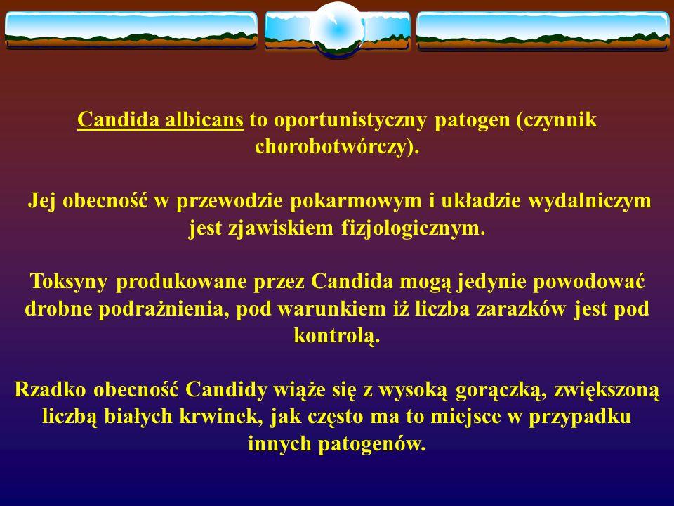 Candida albicans to oportunistyczny patogen (czynnik chorobotwórczy). Jej obecność w przewodzie pokarmowym i układzie wydalniczym jest zjawiskiem fizj