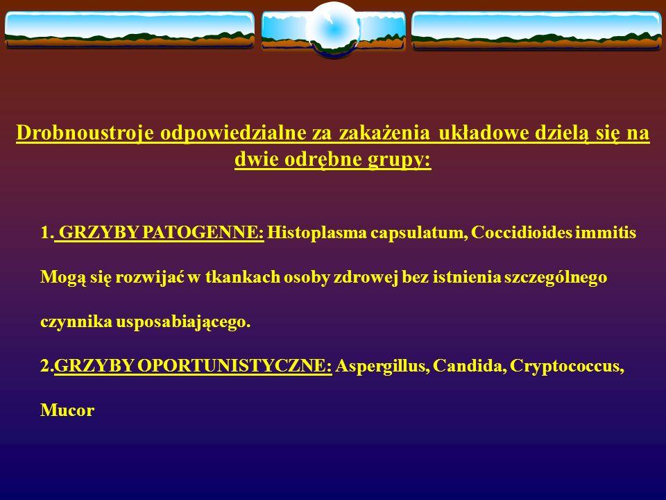 Drobnoustroje odpowiedzialne za zakażenia układowe dzielą się na dwie odrębne grupy: 1. GRZYBY PATOGENNE: Histoplasma capsulatum, Coccidioides immitis