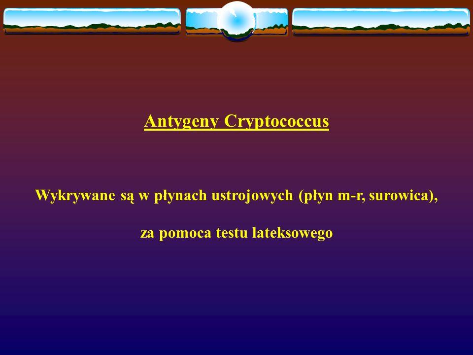 Antygeny Cryptococcus Wykrywane są w płynach ustrojowych (płyn m-r, surowica), za pomoca testu lateksowego