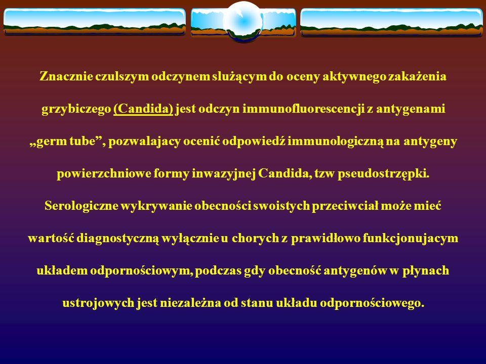 Znacznie czulszym odczynem slużącym do oceny aktywnego zakażenia grzybiczego (Candida) jest odczyn immunofluorescencji z antygenami germ tube, pozwala