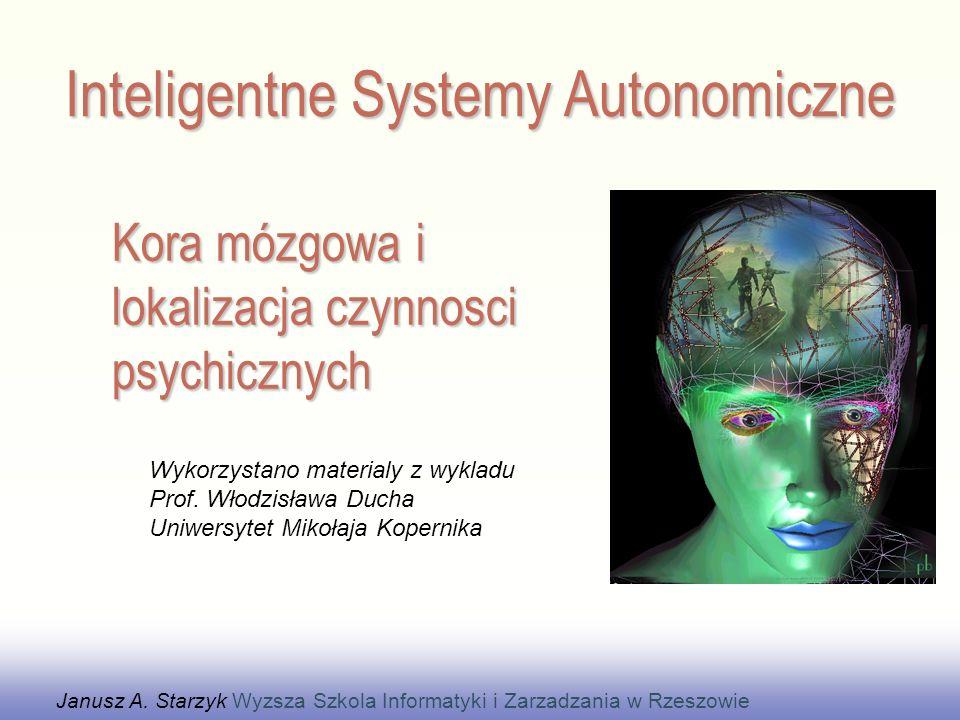 Kora nowa (łać.cortex = kora) jest odpowiedzialna za wyższe czynności poznawcze.