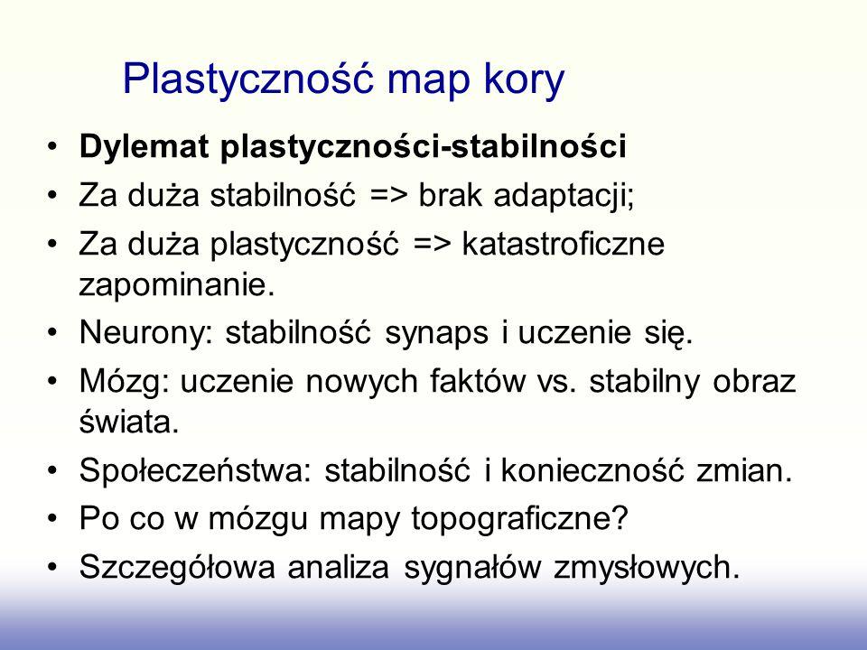 Dylemat plastyczności-stabilności Za duża stabilność => brak adaptacji; Za duża plastyczność => katastroficzne zapominanie. Neurony: stabilność synaps