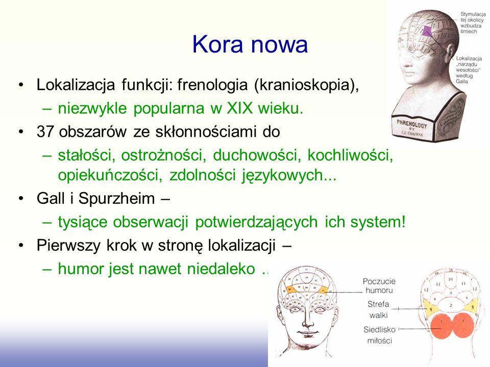 Lokalizacja funkcji: frenologia (kranioskopia), –niezwykle popularna w XIX wieku. 37 obszarów ze skłonnościami do –stałości, ostrożności, duchowości,