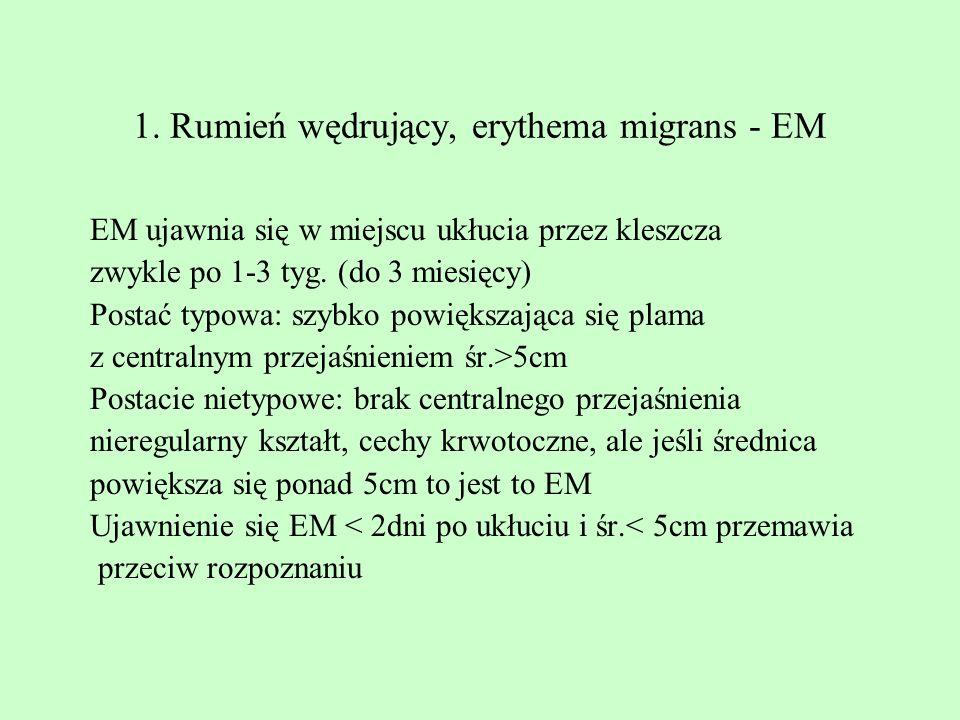 1. Rumień wędrujący, erythema migrans - EM EM ujawnia się w miejscu ukłucia przez kleszcza zwykle po 1-3 tyg. (do 3 miesięcy) Postać typowa: szybko po